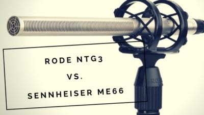 rode-ntg3-vs-sennheiser-me66