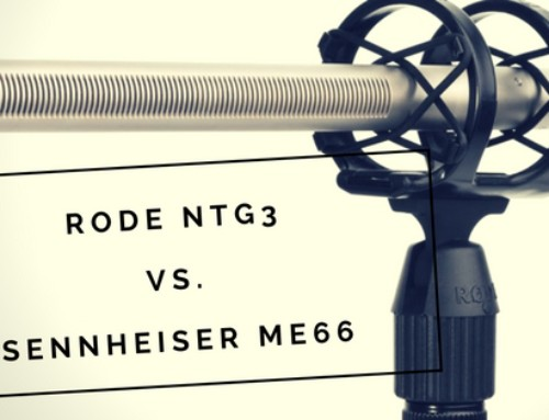 Rode NTG3 vs. Sennheiser ME66 Microphone Test