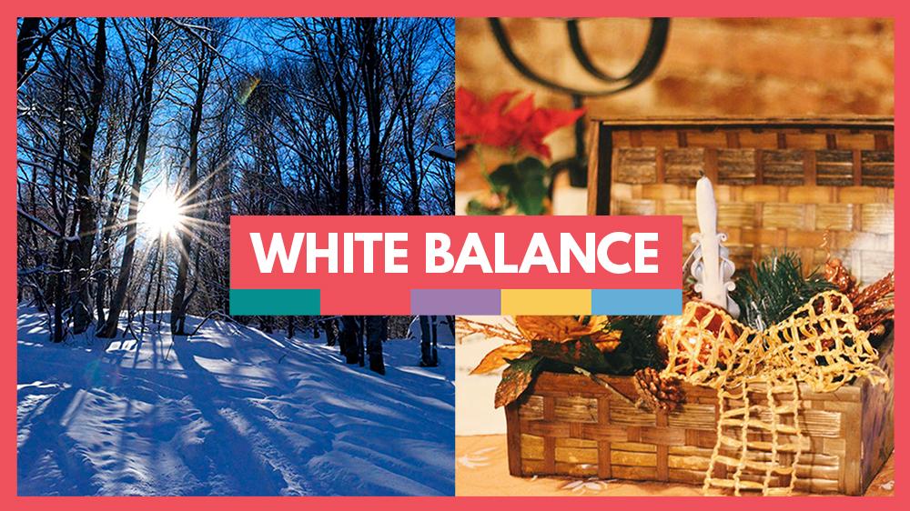 white balance guide